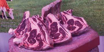 Carnicería en Móstoles